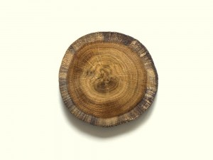 Client image for lakeland oak coasters