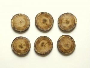 Product image for lakeland oak coasters